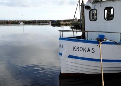 3621 Diana Krokås